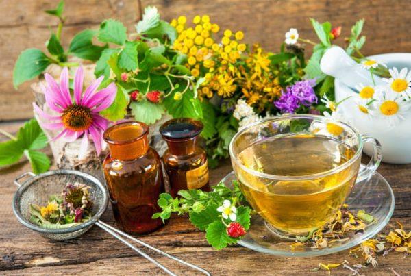 травяной чай от гриппа