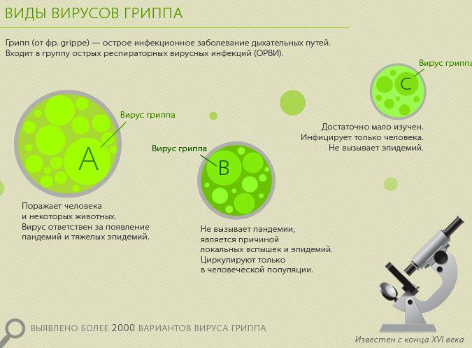 виды гриппа