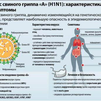вирус свиного гриппа